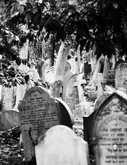 Highgate June 19 - 42 (Lostash) Tags: london highgatecemetary graveyards graves tombs death burials uk