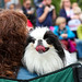 Dog with Person at Parade