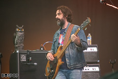 Chris Robinson Brotherhood-4142