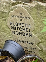 Highgate June 19 - 30 (Lostash) Tags: london highgatecemetary graveyards graves tombs death burials uk