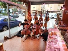 open plaça (2)