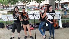 orquestra a la plaça (3)