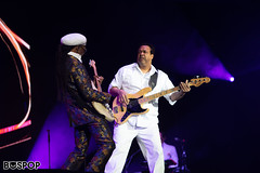 Nile_Rodgers_Chic-4301