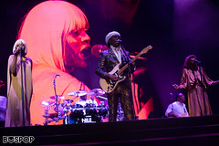 Nile_Rodgers_Chic-4281