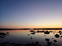 Splash! (mcginley2012) Tags: cameraphone sunset twilight loughcorrib connemara ireland lake splash reflection water summer2019