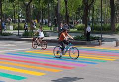 Cycling over pride crossroad (sacbé) Tags: cdmx méxico mexico bike cycling bicycle pride rainbow crossroad park street streetphotography alameda
