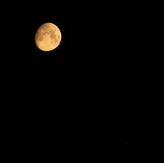 Moon & Jupiter 14 July 2019 00:03 (Sculptor Lil) Tags: jupiter moon london waxinggibbous canon700d