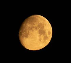 Setting Moon 14 July 2019 (Sculptor Lil) Tags: canon700d london waxinggibbous moon