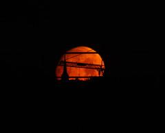 Losing my favourite moonset vista ... (Sculptor Lil) Tags: moonset moon canon700d london waxinggibbous crane