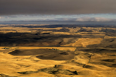 Rolling hills of croplands and farm houses at sunset from Steptoe Butte Eastern Washington State USA (Jim Corwin's PhotoStream) Tags: agriculture americana easternwashington everettwaterfront pacificnorthwest steptoebutte washingtonstate abundance agrarian agriculturefield beautiful beauty countryside crop cropland cultivatedlands cultivation famouslocation farm farmscene farming farmscape fertility field food harvest harvestedfields harvesting hills horizontal landscape localattractions mothernature nobody outdoors palousehills pastoral pasture peaceful photography quiet rollinghills rollinglandscape ruralscene scenery scenic serenity sightseeing summer sunset tourism travel wheat