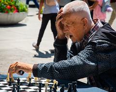 Chess Move (jeffb477) Tags: chess canada toronto ontario summer mistake nikon d7100 park outdoor