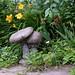 In the Garden (jmunt) Tags: garden flower