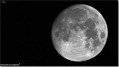 Luna 15 Julio (Antonio Zamora) Tags: antoniozamora moon luna lunar 150600 sigma sigma150600 contemporary canon eos eos7d night nights noche nocturna nocturno noches zoom astro astronomía astronomy lunera