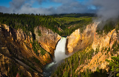 The Golden Canyon (debamalya.chatterjee) Tags: landscape landscapephotography nikon nature nationalpark naturephotography travel travelphotography yellowstone yellowstonenationalpark grandcanyonofyellowstone