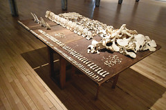 MassMoCA - III (• CHRISTIAN •) Tags: usa art museum contemporaryart massachusetts os musée bones massmoca artcontemporain northadams étatsunis berkshire