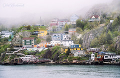 Tiny Colorful Houses of St. John's (Oleh Khavroniuk (Khavronyuk)) Tags: nikon nikkor d750 newfoundland newfoundandlabrador canada stjohns houses colorful colors colours buildings architecture fog ocean atlantic atlanticcanada sea seascape harbour home travel travelphotography tranquility streetphotography street foggy weather flickr geotagged digital new water landscape happy happyplanet summer coast outside historic