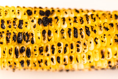 Grilled corn on the cob (spurekar) Tags: corn macromondays macro macromonday food barbecue barbeque summer cookout cook produce char blackened grill grilled cornonthecob outdoor local locallygrown patternsinnature pattern nature picnic