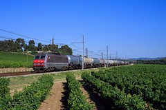BB 26227 (Guillaume POSTEK) Tags: bb26000 bb26227 sybic sncf rails railways fret railfan trainspoting