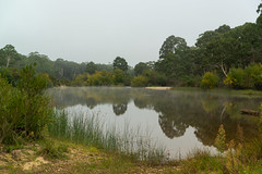 Morning Mist (fate atc) Tags: australia nsw oallenfordrd oallenroad shoalhavenford shoalhavenriver water earlymorning inland mirror mist reflection still upperreachesshoalhavenriver