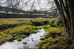 Arropado (SantiMB.Photos) Tags: 2blog 2tumblr 2ig santjoanlesfonts garrotxa girona invierno winter arroyo creek geo:lat=4221310150 geo:lon=249835191 geotagged cataluna españa