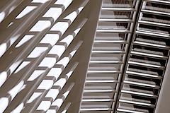 Skylight, Oculus (sjnnyny) Tags: architectural oculus calatrava path nyc wtc d7500 structure skylight manhattan transitcentre