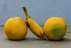 Yellow, yellow dirty fellows! (Bhuvan N) Tags: fruits food foodphotography yellow stilllife stilllifephotography blue colors sphere shapes form