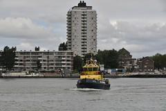 RPA 12 (Hugo Sluimer) Tags: vlaardingen zuidholland holland nederland nikon nikond500 d500 harbour harbourphoto harbourphotography haven havenfotografie havenvlaardingen onzehaven portofrotterdam port nlrtm nl