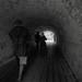 Middelalderligt tunnelsyn/ Tunnel from the dark ages. (mgfoto2011) Tags: hasselblad2000fcw zeisstdistagon60mmf35 film rolleirpx100 ei200 selfdeveloped xtolreplenished minoltascanmultipro danehof nyborg