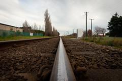 Along the line (196/365) (johnstewartnz) Tags: canon canonapsh apsh eos 100canon 1dmarkiii 1d3 1dmark3 1d 1dmkiii 1diii 1dmk3 canoneos1dmkiii 1740mm 1740 ef1740mmf4lusm 196365 day196 onephotoaday oneaday onephotoaday2019 365project project365 rail railway track islington templeton
