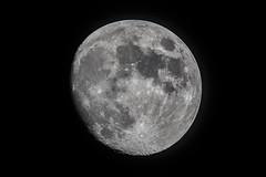 Moon_2019.07.14 (ko1fun) Tags: tsa120 d850 mach1