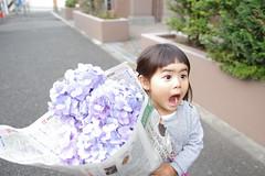 IMGP7750 (sirochan.kanta) Tags: daughter girl snap portrait candid cute