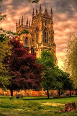 Across Dean's Park (Light+Shade [spcandler.zenfolio.com]) Tags: ©stephencandlerphotography spcandler stephencandlerphotography httpspcandlerzenfoliocom stephencandler england uk lightshade yorkshire york yorkminster deanspark cathedral church religion historical history historic northyorkshire city oldcity oldbuilding