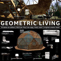 22769 - Geometric Living for The Epiphany : July 2019 (manuel ormidale) Tags: shelf frames coffeetableclutter clutter table coffee stormlight candle flame vitagebirdcage vintage birdcage wallart london art indoor furniture leather leatherbench couch sidetable whiteleather spericalhouse house wood twolevelhouse glass lounger loungerstool geometric 22769 22769bauwerk bauwerk outdoor living pacopooley epiphany epiphanysl theepiphany gacha gachaevent gachagame