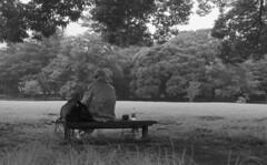 Man listening to jazz (odeleapple) Tags: leica llla canon 50mm yellowfilter kodaktmax100 film monochrome analog bw man bench