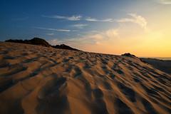 Sandwellen (Norbert Reimer) Tags: grass sand netherlands sonyalpha sonne himmel sonnenuntergang meadow meer evening natur sea holland sun dämmerung beach ocean landschaft strand sony düne niederlande sky sonyalpha7 landscape nature ilce7m2 sunset