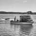Crabber and Crab Skiff Racer (psdenbow) Tags: crabber smithislandcrabskiff maryland monochrome bw canon tamron tamron2875