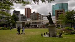 Erasmus in het goren / Erasmus in the green (ClickU2) Tags: pojotwo clicku2 rotterdam rotterdamcentrum erasmus standbeeld statue