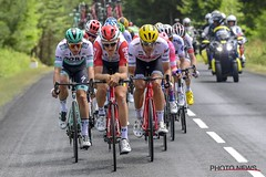 10810426-061 (Lotto Soudal Cycling Team) Tags: cycling cyclisme etape france frankrijk letour letourdefrance protour race rit road ronde rondevanfrankrijk route sport stage tdf tdf2019 tour uci wegrit wielerwedstrijd wielrennen worldtour peterdevoecht 2019 brioude