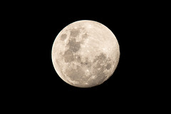 Nearly a Full Moon (Merrillie) Tags: moonphases galaxy astronomy waxinggibbous astrophotography moonlight fullmoon moon nighttime night moonsurface lunar