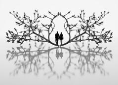 TriumpfBogen (Panasonikon) Tags: panasonikon dmcg81 mzuiko4518 bw sw minimalismus minimalism wein paar reflexion spiegelung bogen photoshop