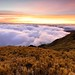 @合歡山_Hehuanshan_Taiwan (monbydick) Tags: hehuanshan hehuanmountain monbydick formosataiwan tamron1530mmf28 taiwan nikond600 nikon tamron seaofclouds mountains 合歡山 合歡山主峰 夕陽 雲海 sunset explore