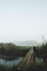 Through the Wooden Bridge (NathanNyx) Tags: sky skies cloud cloudy clouds sunrise tree trees horizon water waterway reflection reflections instacloud bridge wooden atmosphere mist morningmist beautiful evening river kovel koveltoday turija mood calm reeds