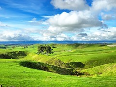 Lovely #Farm around the #Hobbitton, the #Green #Hills is perfect location for the movie set. #Memory of #TheHobbit #LordofTheRings #LOTR  #KiwiTrip to #Kiwiland #NZ #DownUnder #KiaOra #PureNewZealand #NewZealand (yongki_milanda) Tags: instagramapp square squareformat iphoneography uploaded:by=instagram