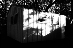 Little white shed (rustman) Tags: atx blackandwhite bnw building bw centraltexas contarst community flower grain light mayfieldpark mayfieldparkandpreserve monochrome nature photostroll photowalk photowalksatx shadows shed street texaslife trees windows