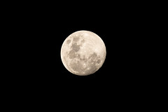 Nearly a Full Moon (Merrillie) Tags: moonphases night astronomy waxinggibbous astrophotography galaxy fullmoon moon nighttime moonsurface moonlight lunar