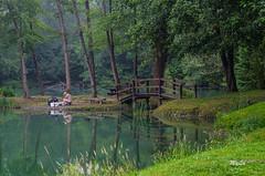 Pêcheur sous la brume (MyLavie) Tags: lac lacot artix pyrenees aquitaine pecheur pont eau arbres reflets matin brume pentax myla mylenelavie