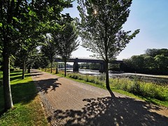 Glorious summer morning in Avenham and Miller Park, Preston, Lancashire (janettehall532) Tags: glorious summersmorning summer avenhamandmillerpark park prestonlancashire preston lancashire naturephotography nature riverribble beautiful beauty landscapephotography landscape landscapelovers photography photographylovers photo photosofpreston lovenature naturelovers beautyinnature northwestengland england huaweip30pro huawei flickr flickrcentral picture pic greatbritain unitedkingdom uk