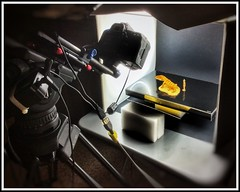 Photographic Macro Session with SoftLight Box (RobinGoodfellow_(m)) Tags: photographic macro session softlight box canon 5d 50mm diopters