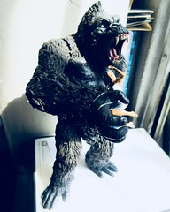 King Kong on Rampage with Fay Wray type 5392 (Brechtbug) Tags: king kong gorilla mezco toy monster portrait plastic walking spitting sparks creature rko empire state building new york city july 07142019 nyc 2019 shelf toys action figure wild shadow shadows gorillas fay wray type heroine