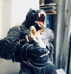 King Kong on Rampage with Fay Wray type 5419 (Brechtbug) Tags: king kong gorilla mezco toy monster portrait plastic walking spitting sparks creature rko empire state building new york city july 07142019 nyc 2019 shelf toys action figure wild shadow shadows gorillas fay wray type heroine